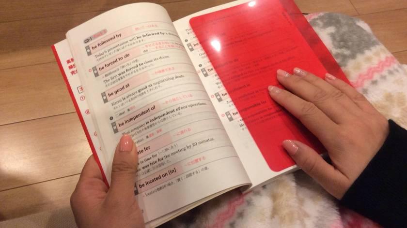 japan-check-sheet
