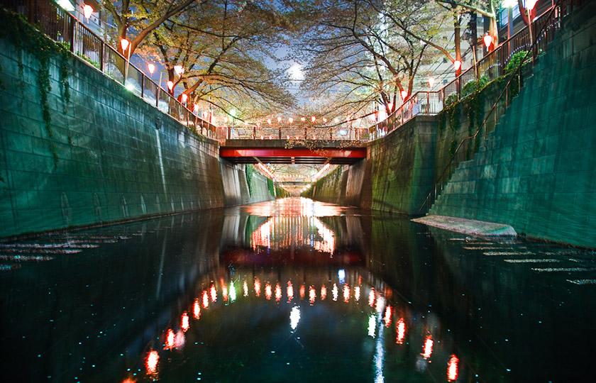 nakameguro-river_hanami