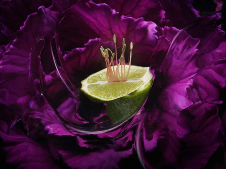 culinary, Japanese food, Ayako Suwa, Food Creation